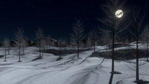 Vollmond im Dezember 2020 – die längste Nacht des Jahres!