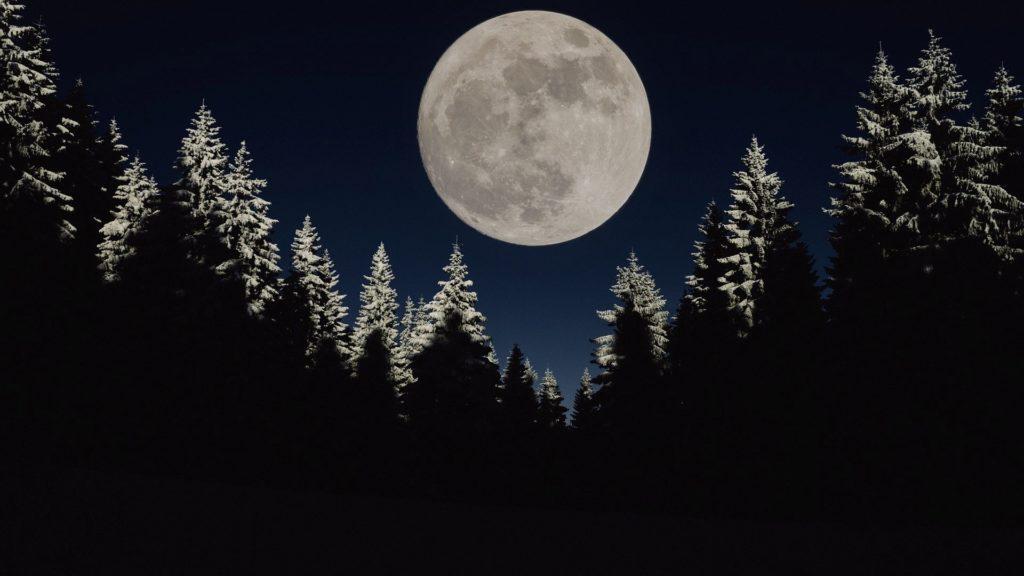 Der Wolfsmond – Erster Vollmond des Jahres 2021